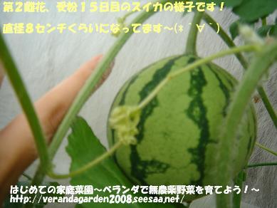 DSC01578.JPG