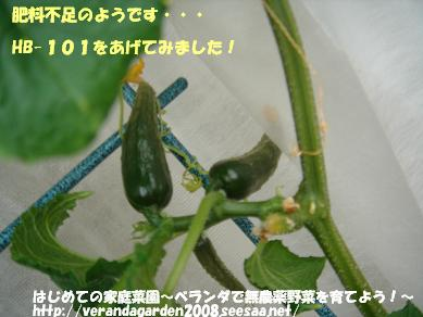 DSC01766.JPG