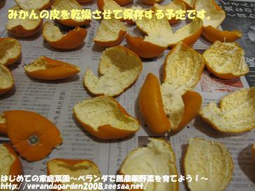 IMG_0791.jpg