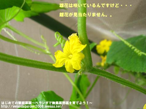 IMG_1620.jpg