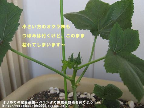 IMG_3714.jpg