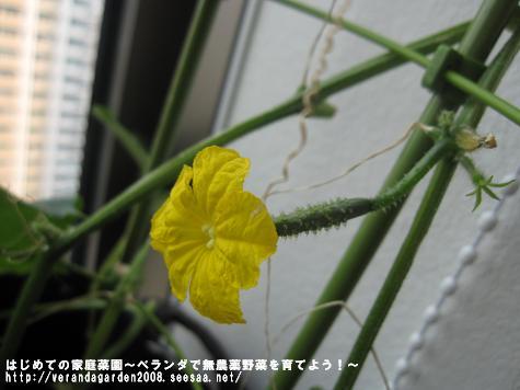 IMG_3839.jpg