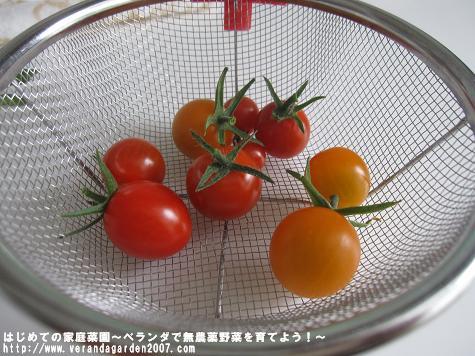 IMG_4926.jpg