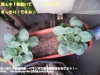 TS370040.JPG