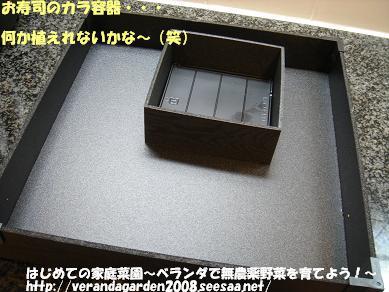 DSC01593.JPG