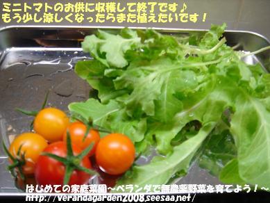 DSC01868.JPG