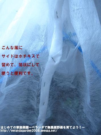 IMG_1672.jpg