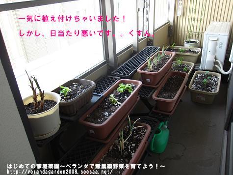 IMG_3259.jpg