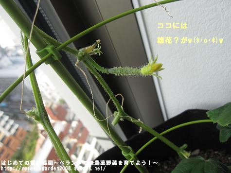 IMG_3825.jpg