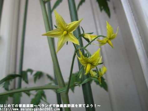 IMG_4759.jpg